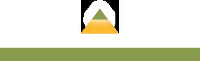 Ceridium.com logo